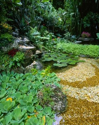 Key-West-Garden