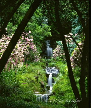 South-Africa-Garden-4