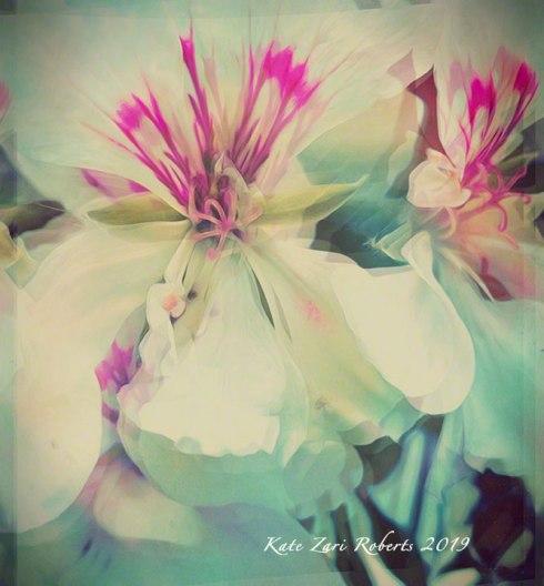 Floral-Odyssey