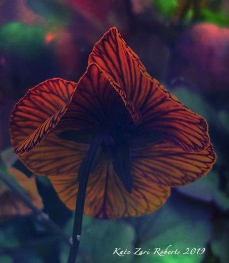 Flower-Feeling